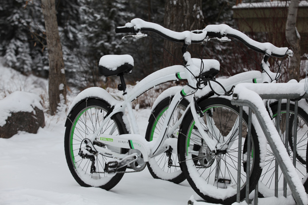 cruiser bike winter