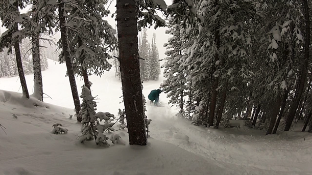 Northwoods Vail powder